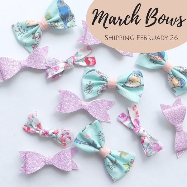 Little Bow Co March Bows
