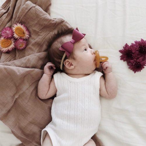 Little Bow Co Molly Bow Velvet