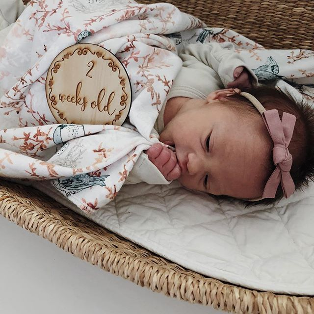 Little Bow Co Dusty Pink Knot Bow Headband